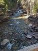 Junction Creek 154925W1C