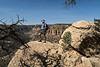 Petroglyph Trail 0239W1C