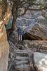 Petroglyph Trail 0218W1C