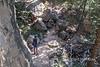 Petroglyph Trail  0213W1C