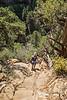 Petroglyph Trail  0217W1C