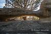 Juniper Arch (Map #19) NM 550