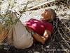 Mary Resting 140144W1C
