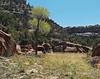 Mary Sand Canyon 143429W1C