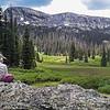 Snowdon Meadows Hike  115341W1C
