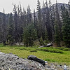 Snowdon Meadows Hike 115447W1C