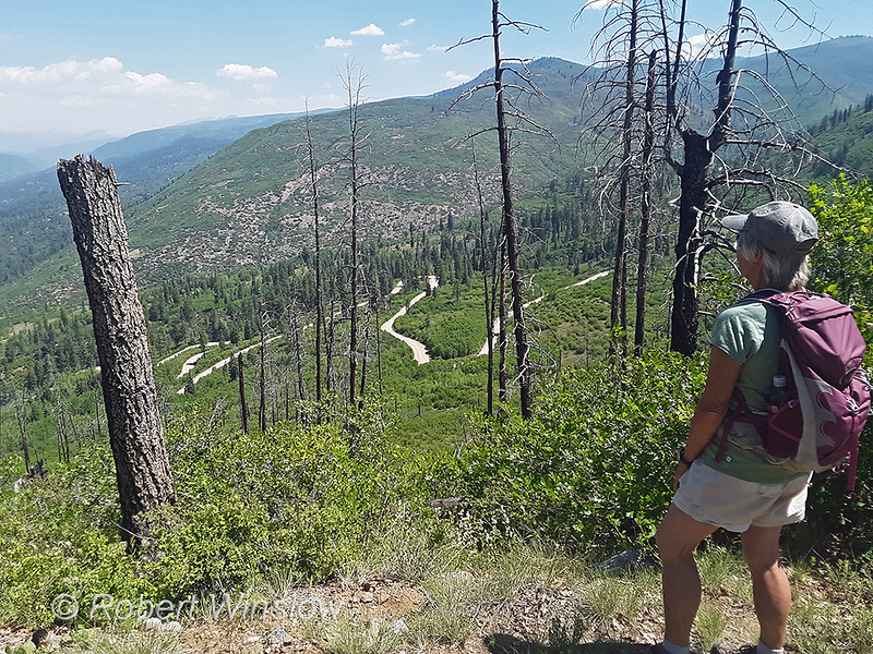 Looking down on the Missionary Ridge Road112241W1C