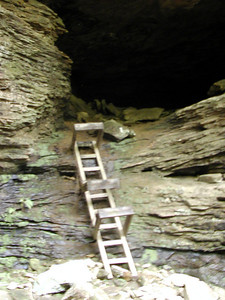 Ladder climbs up to a cave. If you go thru it reconnects with the trail!  Honey Creek Loop Hike Big South Fork Recreation Area Scott County, TN