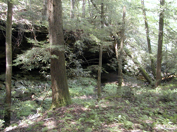 Verdant bluff line on Honey Creek Loop Hike