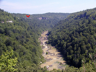 The red arrow indicates the bluff line of the Cumberland Plateau.  The entire area is like this.  They'd be called canyons out west, but here they are called gorges or gulfs.