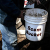 Making maple syrup? Everyone needs a scum bucket.