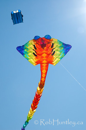 The 2011 Windscape Kite Festival in Swift Current, Saskatchewan. June 26, 2011. © Rob Huntley