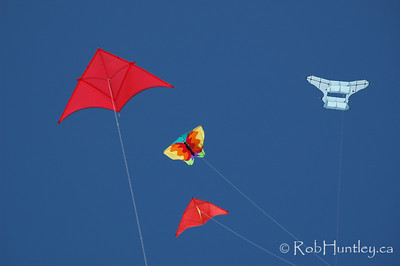 Kites at the 2007 Barmouth Kite Festival, Barmouth, Wales, UK. © Rob Huntley