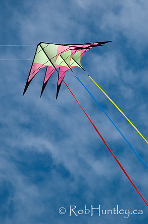 Acrobatic stunt kite at the 2011 Windscape Kite Festival