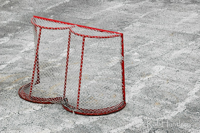 Abandoned hockey net after the winter ice has melted.