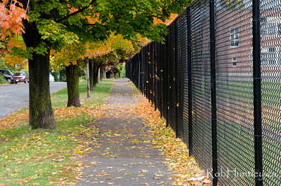 The fence and sidewalk beside Broadview Public School.
