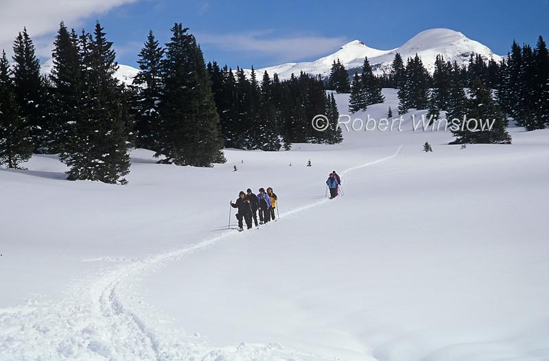 Snowshoers, Andrews Lake Area, Engineer Peak in Background, San Juan National Forest, Durango, Colorado