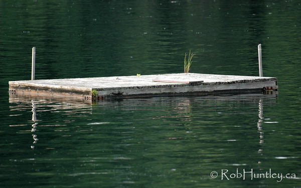 Swimming raft at a cottage on MacGregor Lake, Quebec.