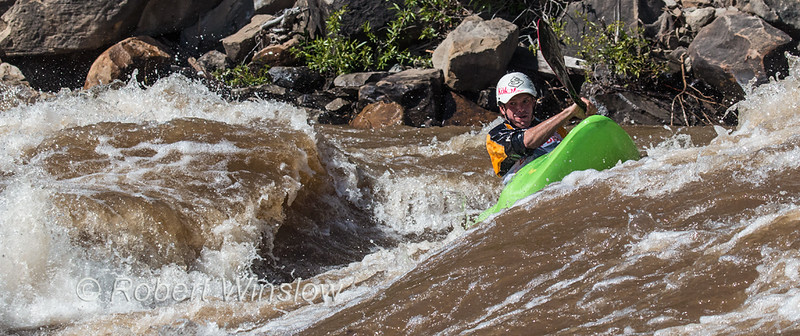 Kayaker, Animas River Days, Animas River, Smelter Rapid, Durango, Colorado, USA, North America