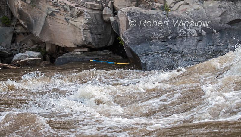 Paddle in an Eddy, Animas River Days, Animas River, Smelter Rapid, Durango, Colorado, USA, North America