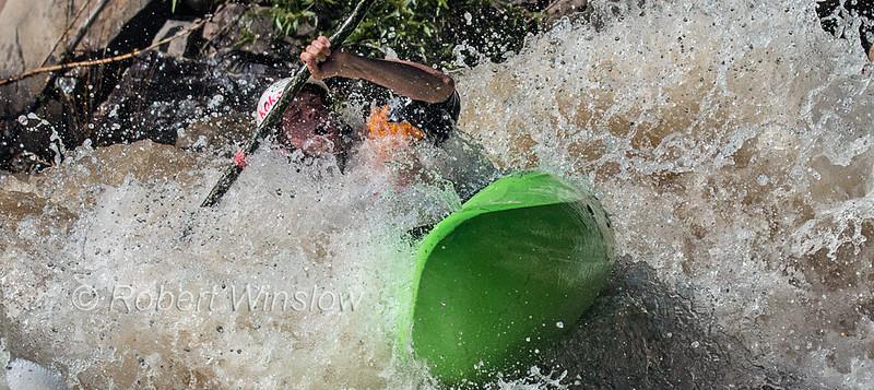 Kayaker, Animas River Days, Animas River, Smelter Rapid, Durango, Colorado, USA, North America