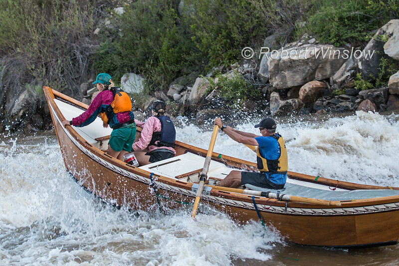 Dory, Animas River Days, Animas River, Smelter Rapid, Durango, Colorado, USA, North America