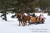 Rapp Corral Sleigh Ride, Haviland Lake, San Juan National Forest, Durango, Colorado, USA, North America