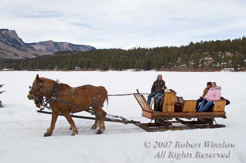 Rapp Corral Sleigh Ride, Haviland Lake, San Juan National Forest, Durango, Colorado, USA, North America