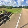 Bent on the Natchez Trace