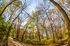 Trails near Missouri River west of St  Louis - C2-0259 - 72 ppi