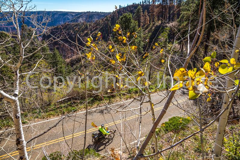 North Rim of Grand Canyon National Park - C3-0110 - 72 ppi