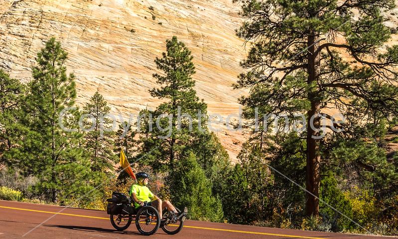 Zion National Park - C2-0058 - 72 ppi-3