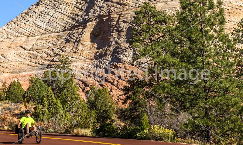 Zion National Park - C2-0047 - 72 ppi-3
