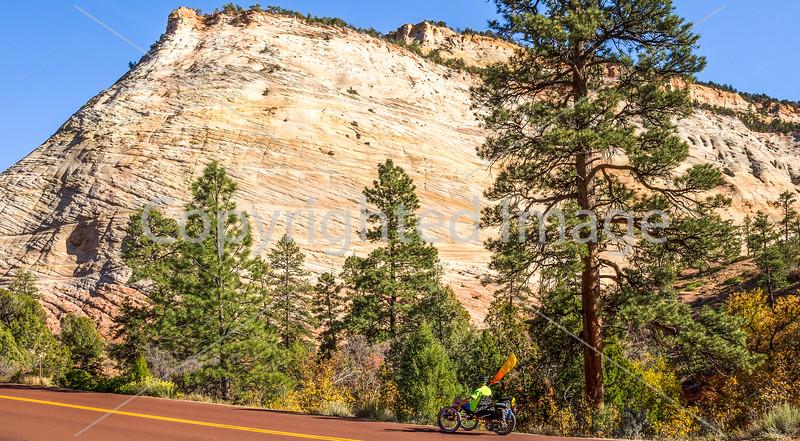 Zion National Park - C2-0022 - 72 ppi-3