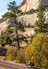 Zion National Park - C2-0074 - 72 ppi-2