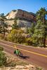 Zion National Park - C2-2 - 72 ppi
