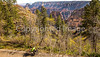 North Rim of Grand Canyon National Park - C3-0162 - 72 ppi