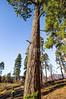 North Rim of Grand Canyon National Park - C2-30031 - 72 ppi