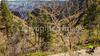 North Rim of Grand Canyon National Park - C3-0020 - 72 ppi