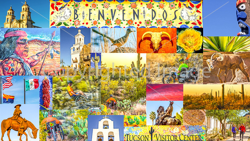 Postcard - Tucson Area & Saguaro National Park, Arizona - TerraTrike - #3 - final