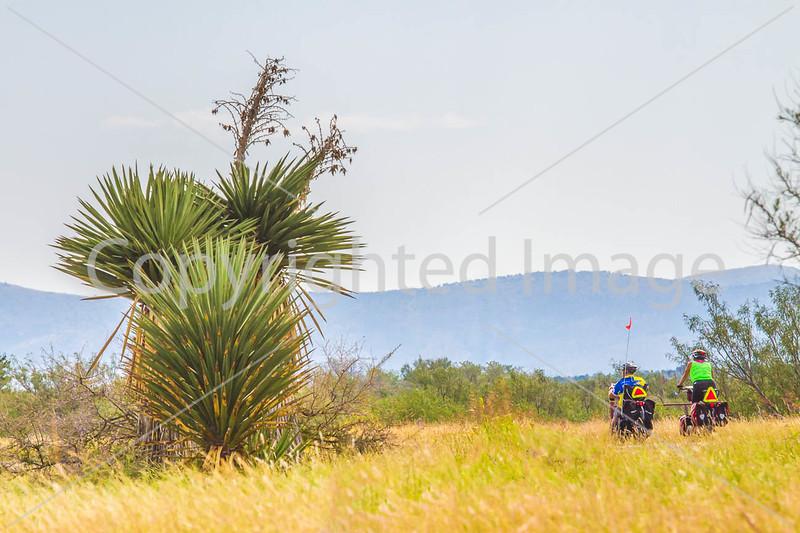 Southern Tier riders, Alpine to Marathon, Texas - C4-0448 - 72 ppi