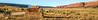 Vermilion Cliffs National Monument - C3-0053 - 72 ppi-2