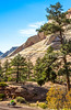 Zion National Park - C2-0083 - 72 ppi-3