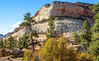Zion National Park - C2-0083 - 72 ppi