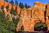 Cycle Utah - Red Canyon near Bryce Cyn, UT - 103 - 72 ppi
