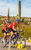 Sojourn cyclists in Saguaro NP East - D2-C2-0037 - 72 ppi-4