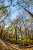 Trails near Missouri River west of St  Louis - C2-0286 - 72 ppi