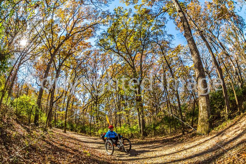 Trails near Missouri River west of St  Louis - C2-0171 - 72 ppi