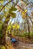 Trails near Missouri River west of St  Louis - C2-0215 - 72 ppi