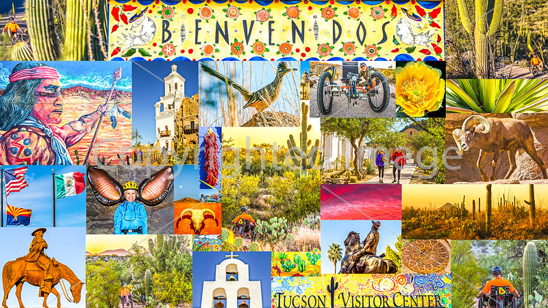 Postcard - Tucson Area & Saguaro National Park, Arizona - TerraTrike - JPEG - final - 72 ppi